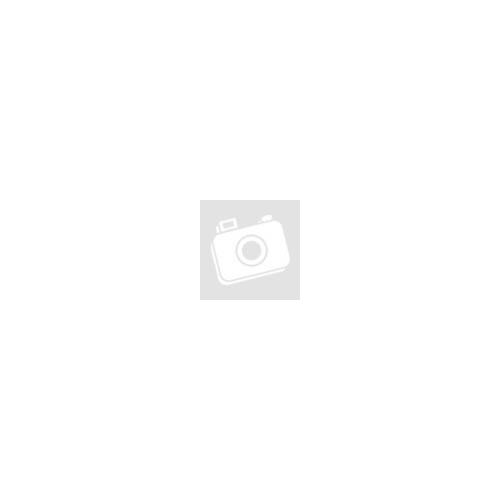 SC Tubehead titanium implant level positioned